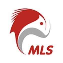 Лендинг MLS Холдинг